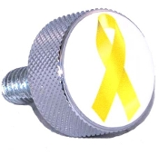 Harley Twin Cam Air Cleaner Bolt - Chrome Billet Ribbon Yellow W