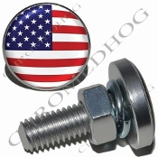 Sm Silver Billet License Plate Bolts - Flag - USA