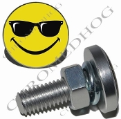 Sm Silver Billet License Plate Bolts - Smile Face Shades