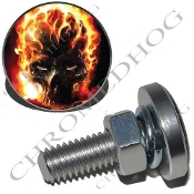 Sm Silver Billet License Plate Bolts - Flaming Skull