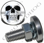 Sm Silver Billet License Plate Bolts - Ghost Skull