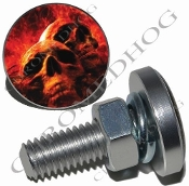 Sm Silver Billet License Plate Bolts - Grave Skull