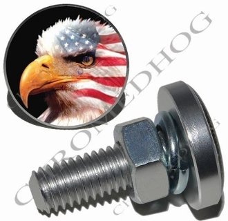Sm Silver Billet License Plate Bolts - Eagle - American
