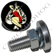 Sm Silver Billet License Plate Bolts - Pin Up - Skull