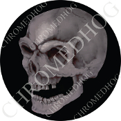 Premium Round Decal - Real Gray Skull - Black