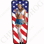 08-15 Ultra & Electra Glide Dash Insert - Pin Up School Flag